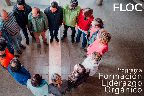 programa liderazgo organico