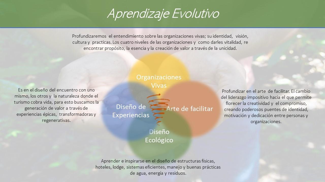 ap evolutivo 3