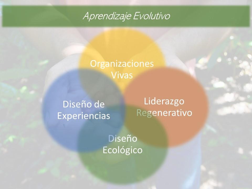 Aprendizaje Evolutivo 2